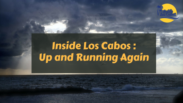 Inside Los Cabos is Up and Running Again, Ready for All Your Transportation Needs!